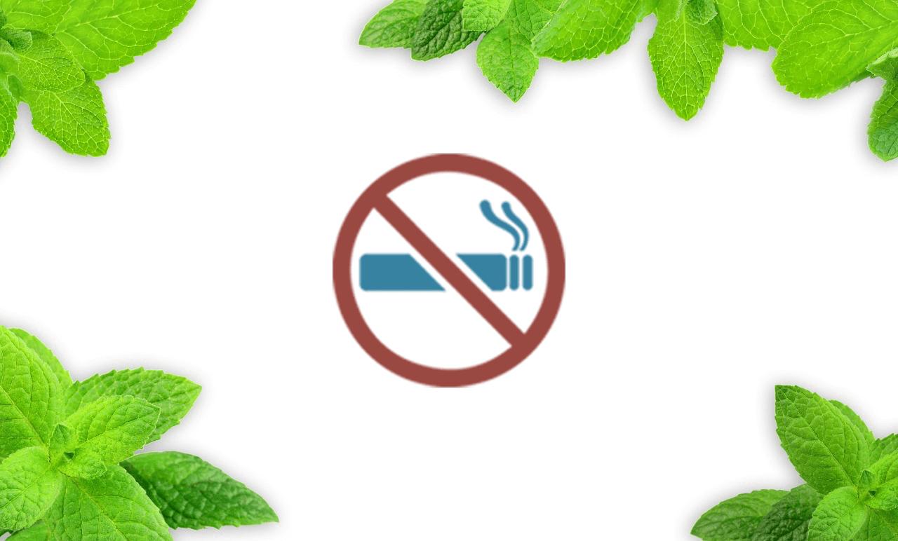 Ebenso wie in einer normalen Zigarette schädliche Stoffe sind, sind diese auch in Menthol Zigaretten.