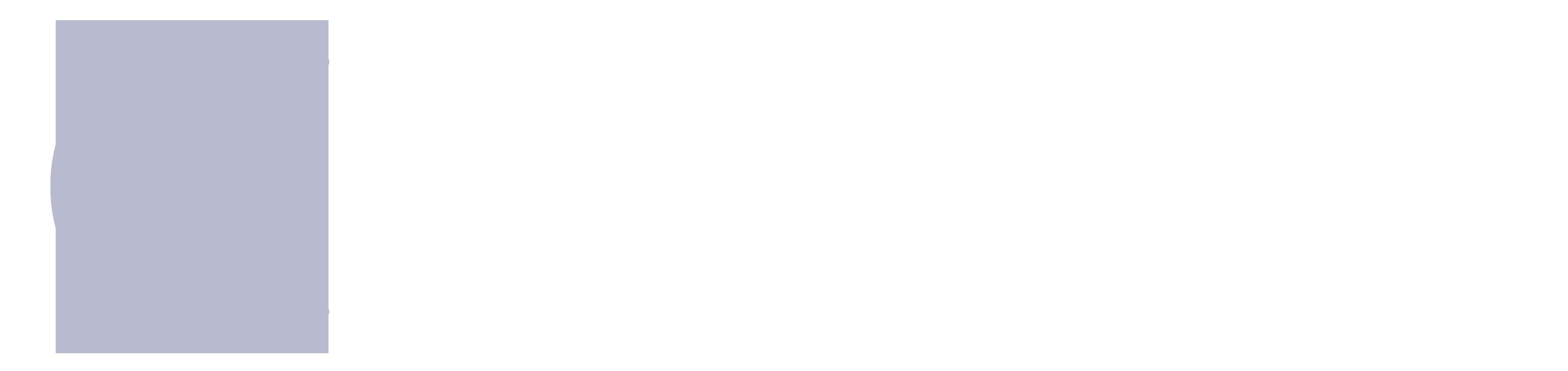 Denis Hoeger Caballero Consulting Logo