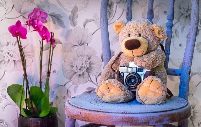 Teddy Kamera Stuhl