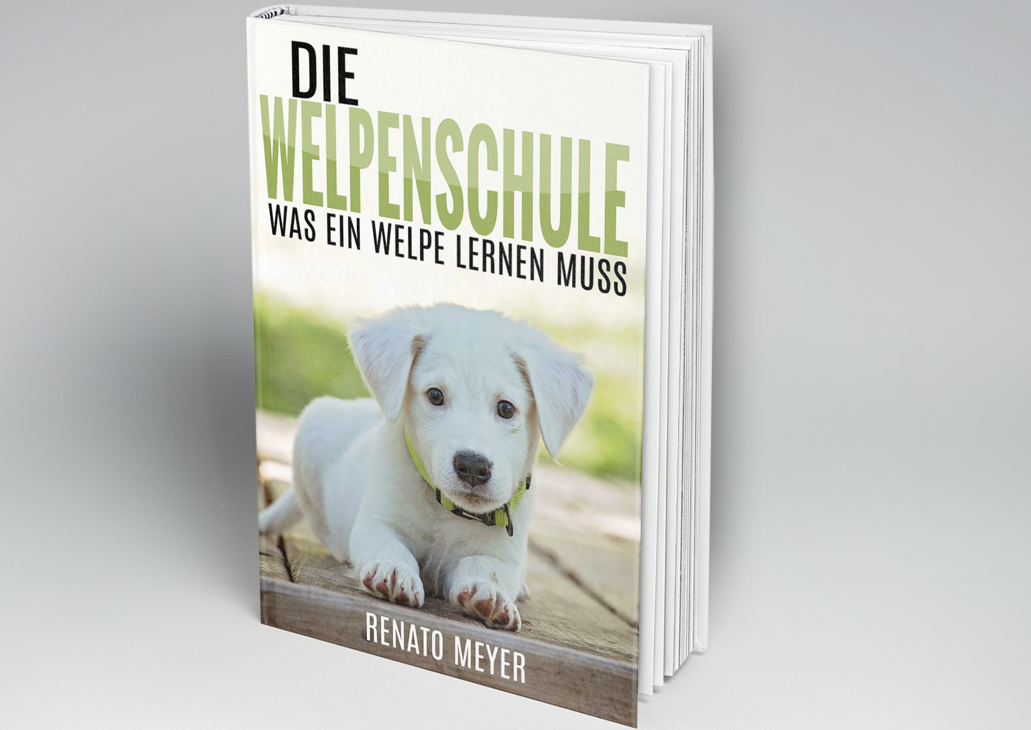 Hundeschule Cover
