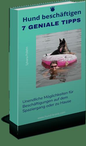 Schäferhund im Schlauchboot