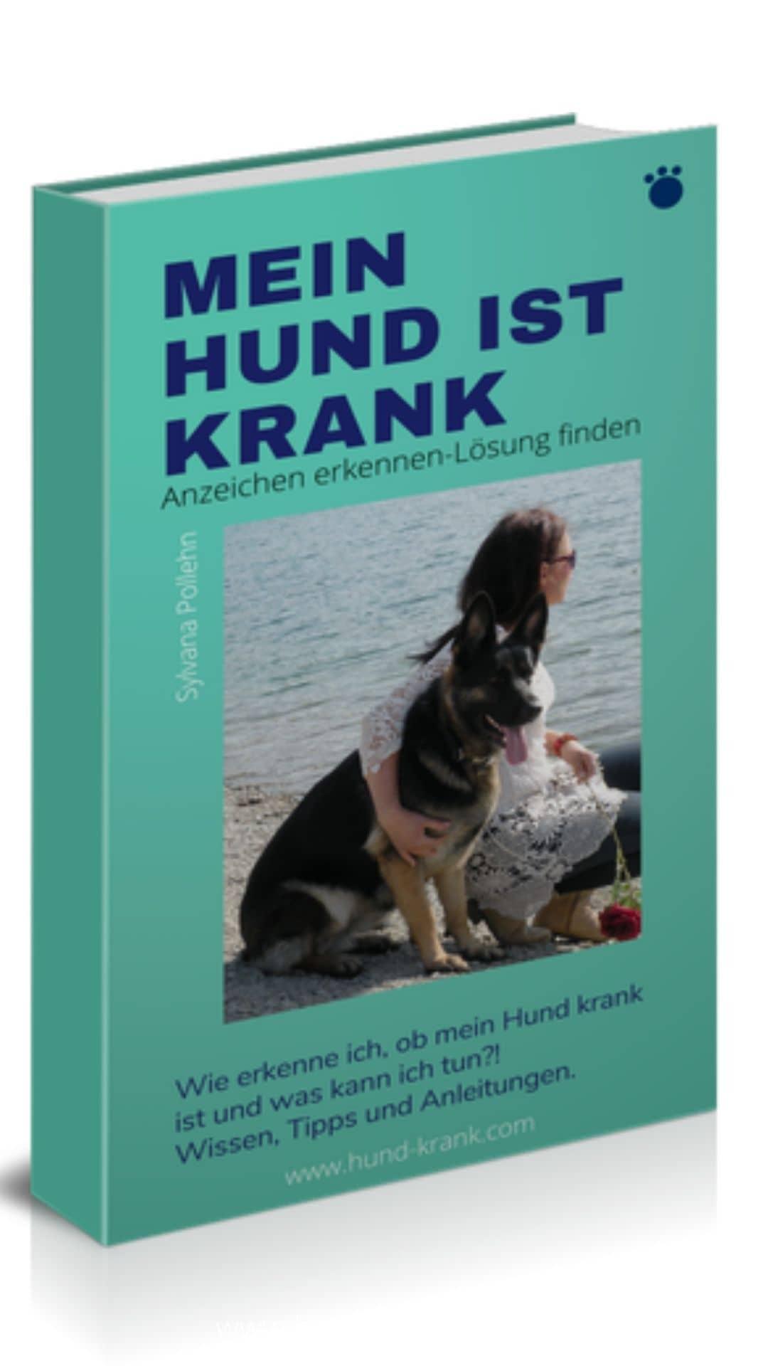 Hund im Arm der Besitzerin
