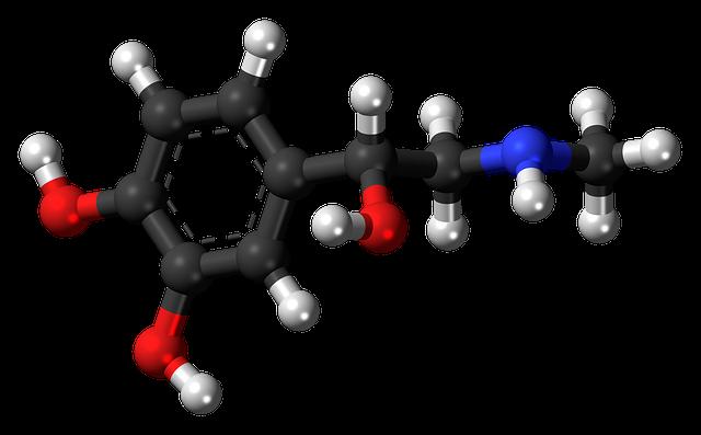 gesund Abnehmen - Leptinhormon
