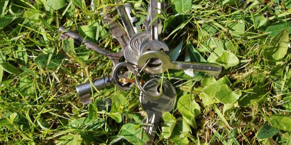 Schlüssel wurde auf einer Rasenfläche verloren