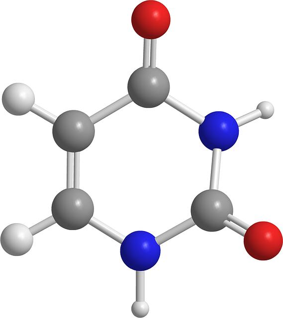 nitrosatives Stressmolekühl