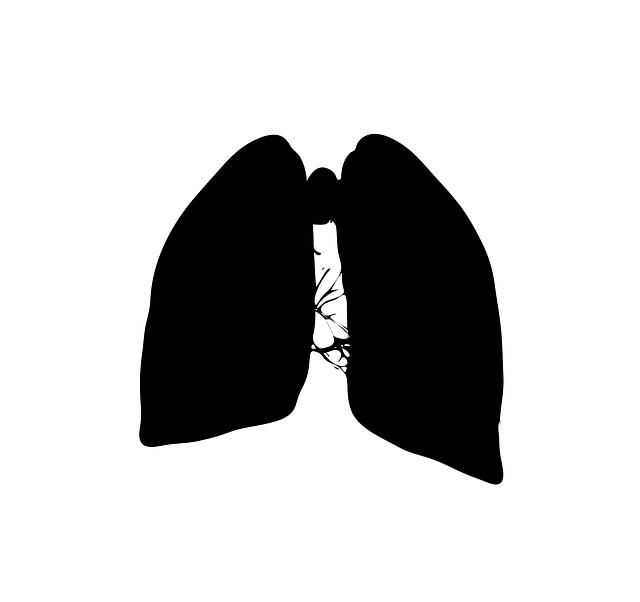 Organ wird dargestellt