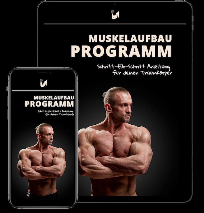 Muskelaufbau Programm Produktbild