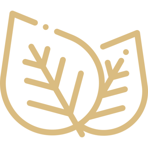 Natürliche Produkte Icon