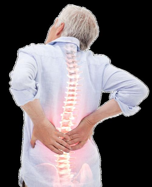 Gesunder Rücken Ratgeber Header
