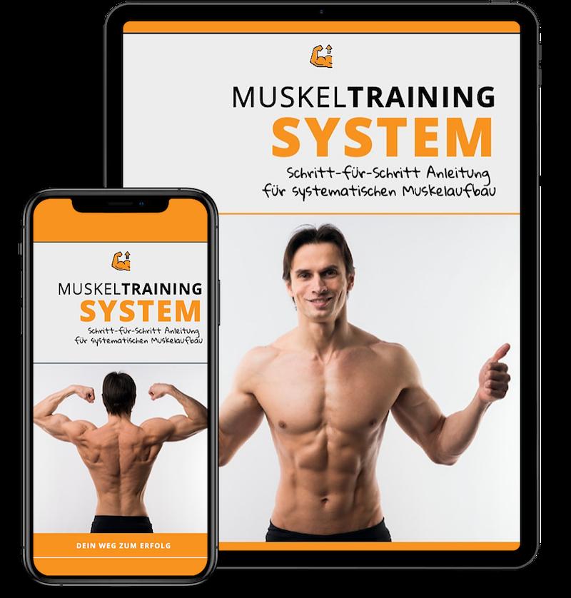 Muskel Training System Produktbild