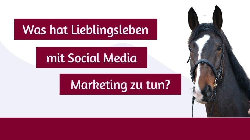 Was hat Lieblingsleben mit Social Media Marketing zu tun?