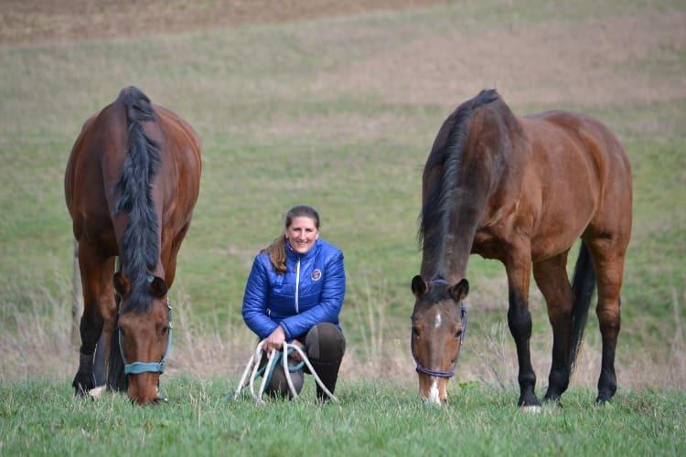 Grajek Coaching Pferdegestütztes Coaching