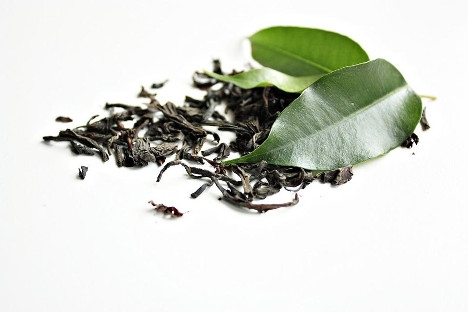 Grünen Tee