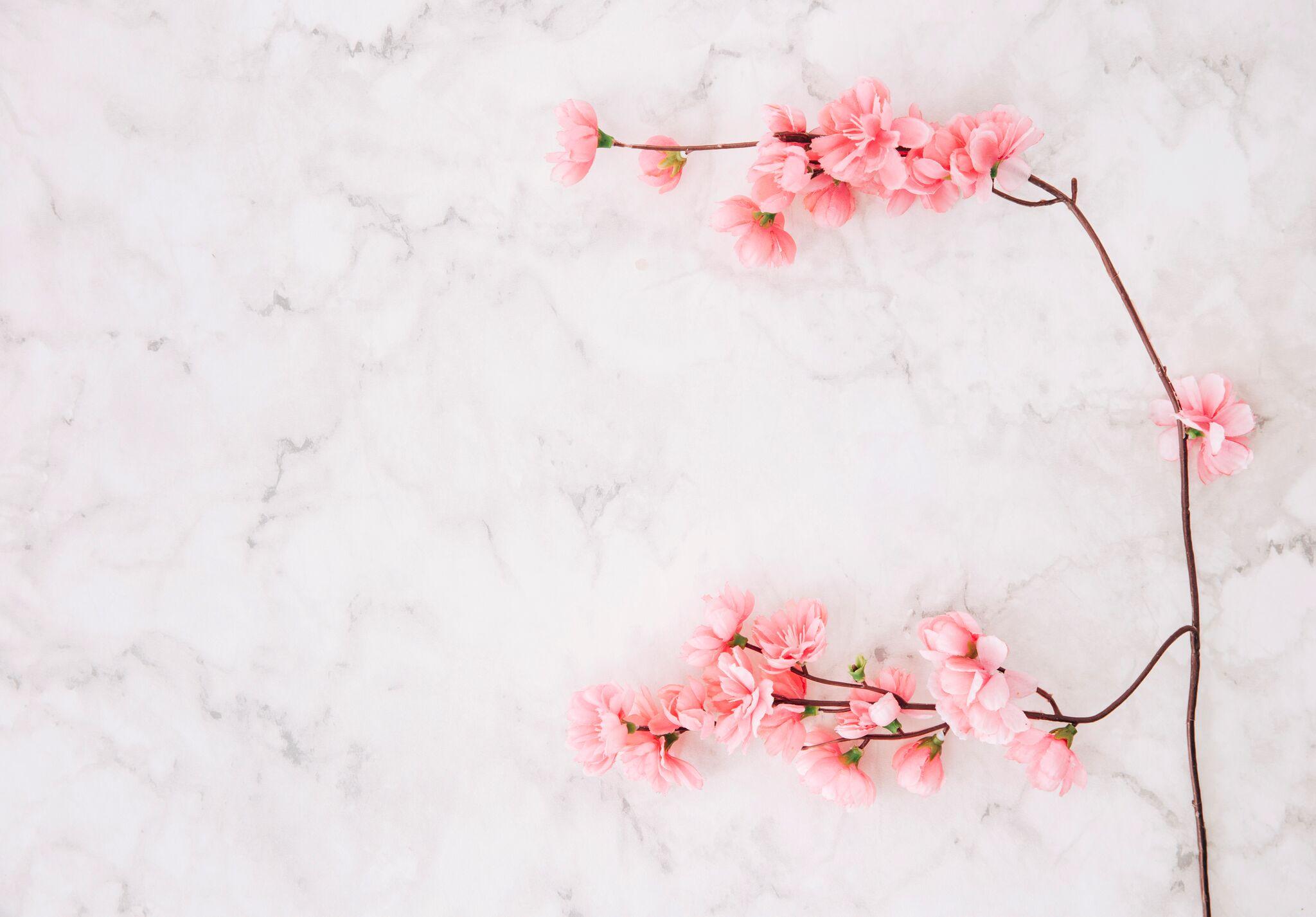 Im Frühling abnehmen