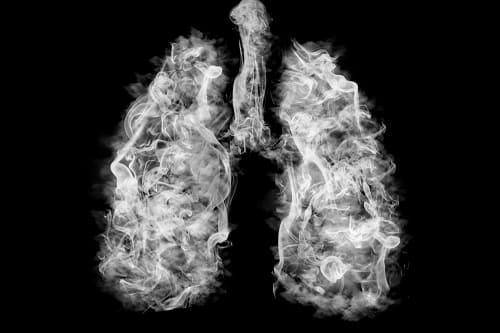 Kunstbild, bei der die Lunge aus reinem Tabakrauch besteht