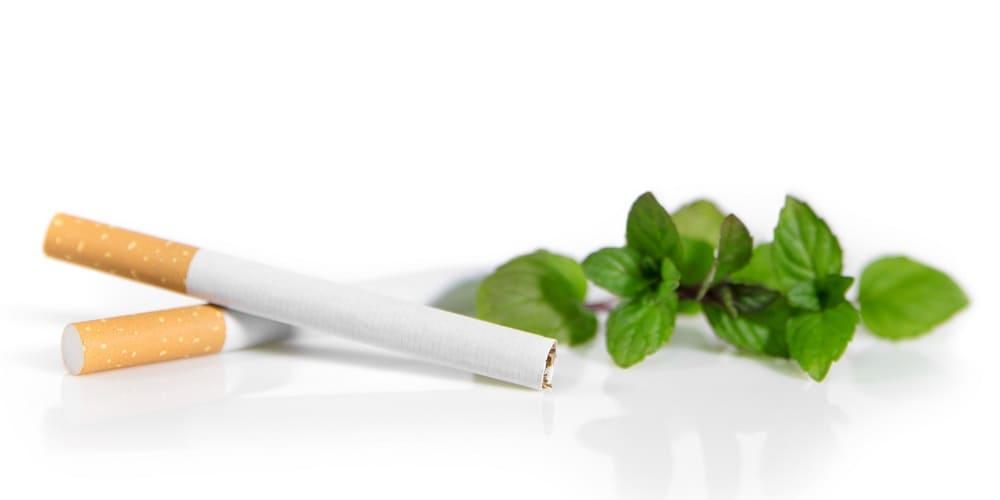 Mentholhaltige Pflanze neben Zigaretten