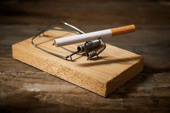 Falle mit einer Zigarette als Köder