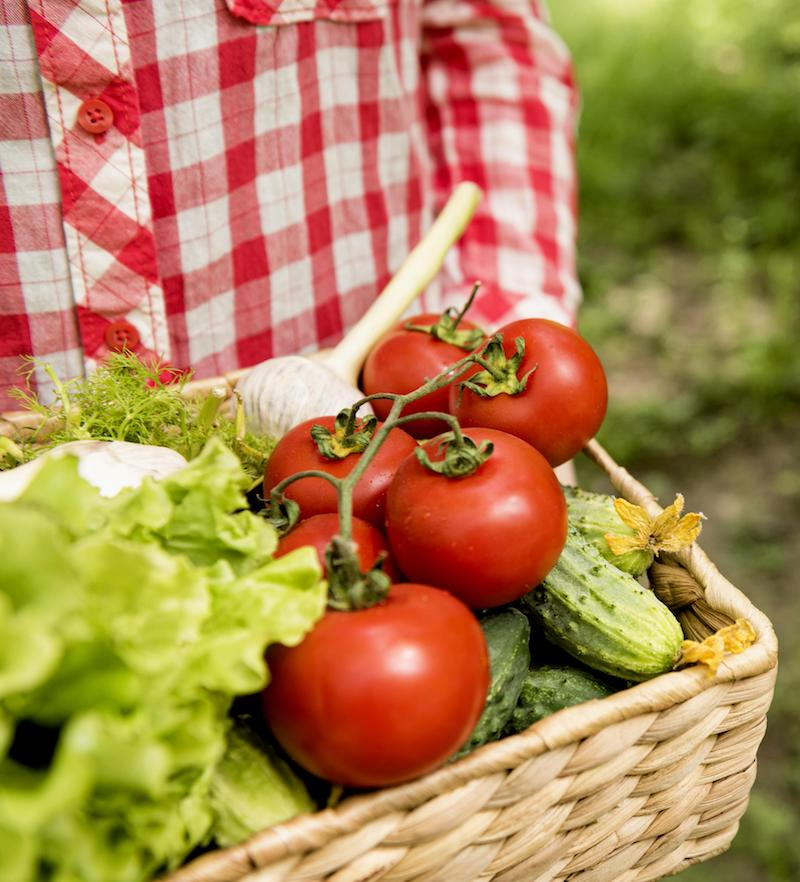 frisches Gemüse ohne Kohlenhydrate aus regionalem Anbau