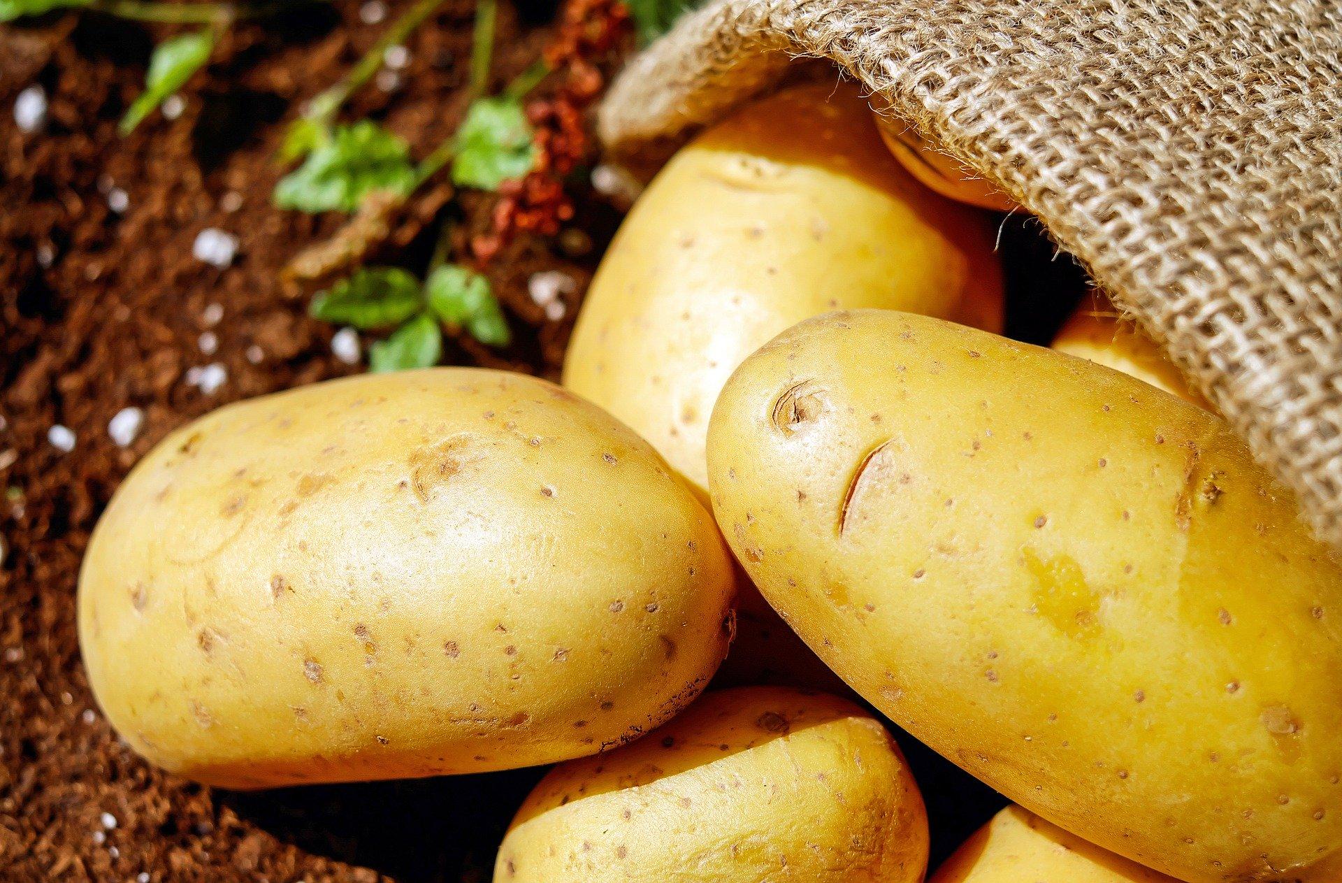Ernährungstipp 2: Iss' mehr Kartoffeln anstatt Brot und Nudeln