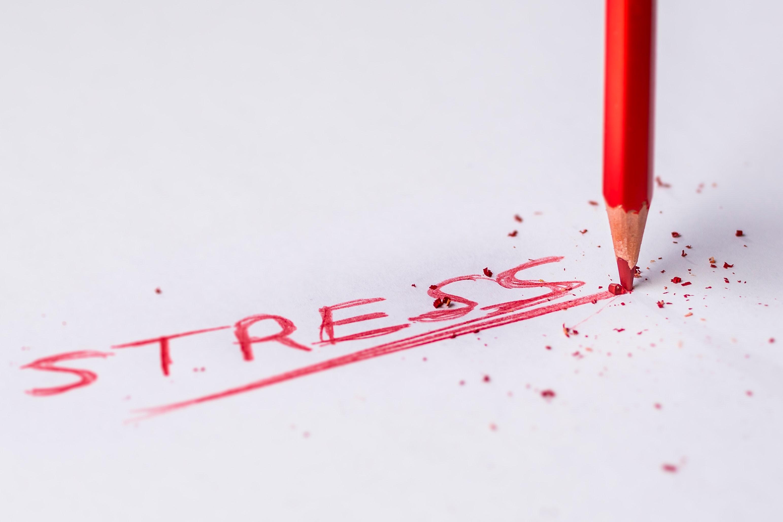 Was ist Stress ?