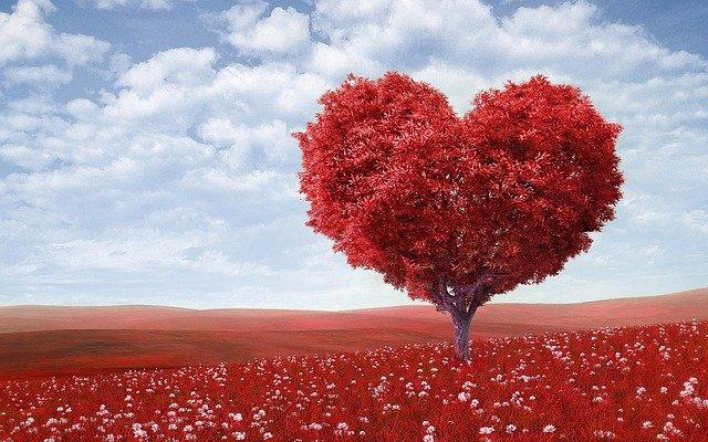 Was ist liebe - Herzbaum