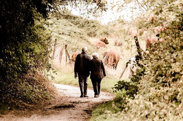 Älteres glückliches Paar Paartherapie