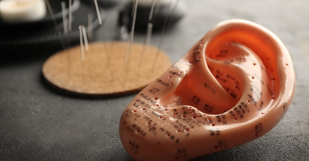 Plastikohr für Akupunkturübungen, Nahaufnahme. Mit im Hintergrund Akupunkturnadeln