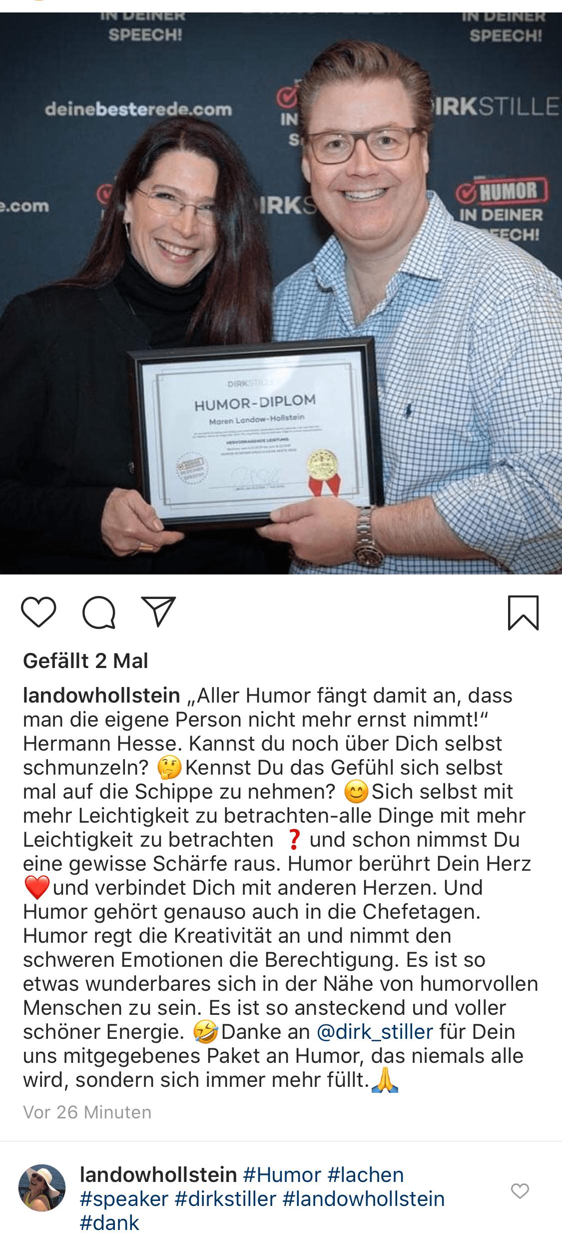 Maren  Landow-Hollstein über Dirk Stiller