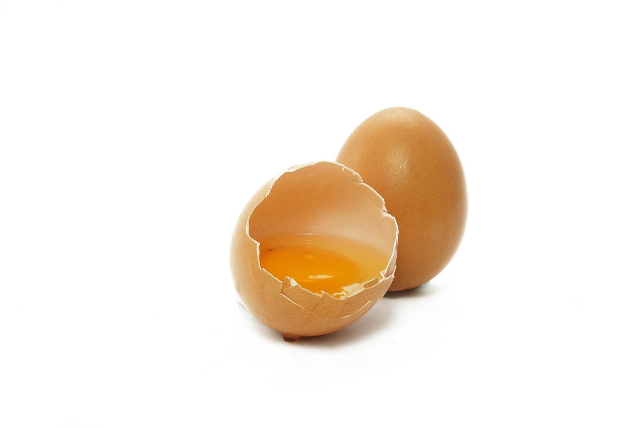 Eiiweißhaltige Nahrung