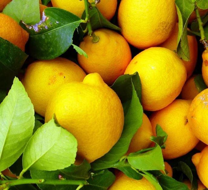 Zitronen Diät