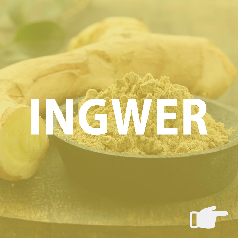Artikel über Ingwer