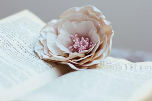 Blume auf einem Buch