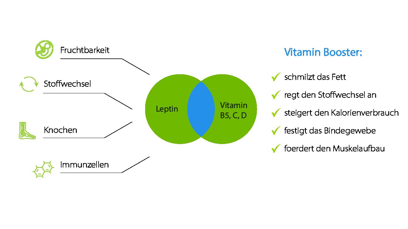 Leptin Vitamin Booster