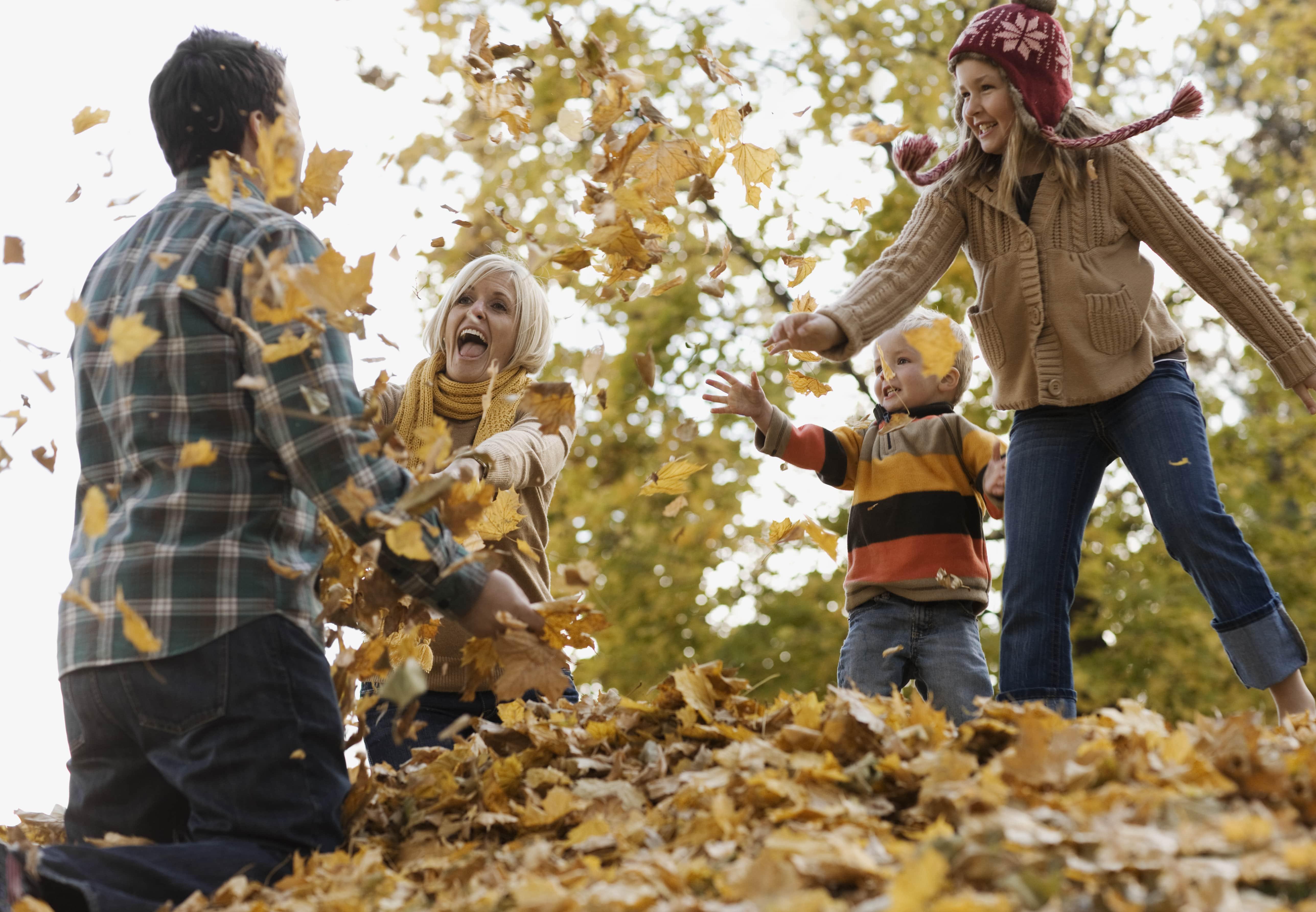 Familie spielt mit Laub im Wald