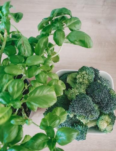 Die 8 positiven Effekte von Brokkoli musst du unbedingt kennen!
