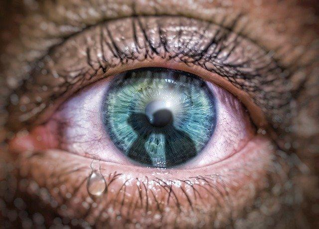 Auge mit der Darstellung der Eifersucht