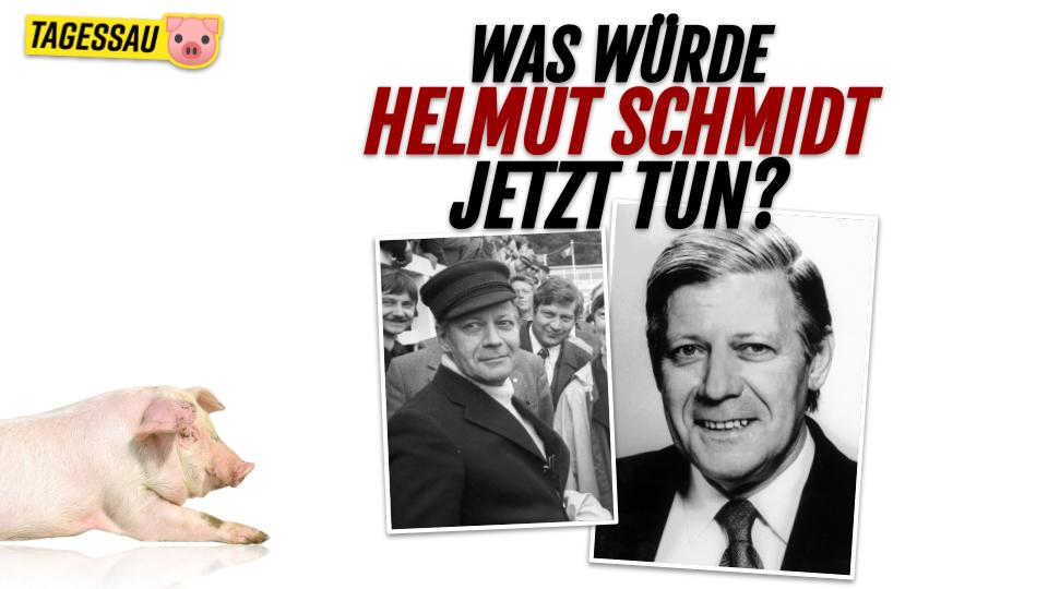 Was würde Helmut Schmidt jetzt tun? - Der Krisenkanzler