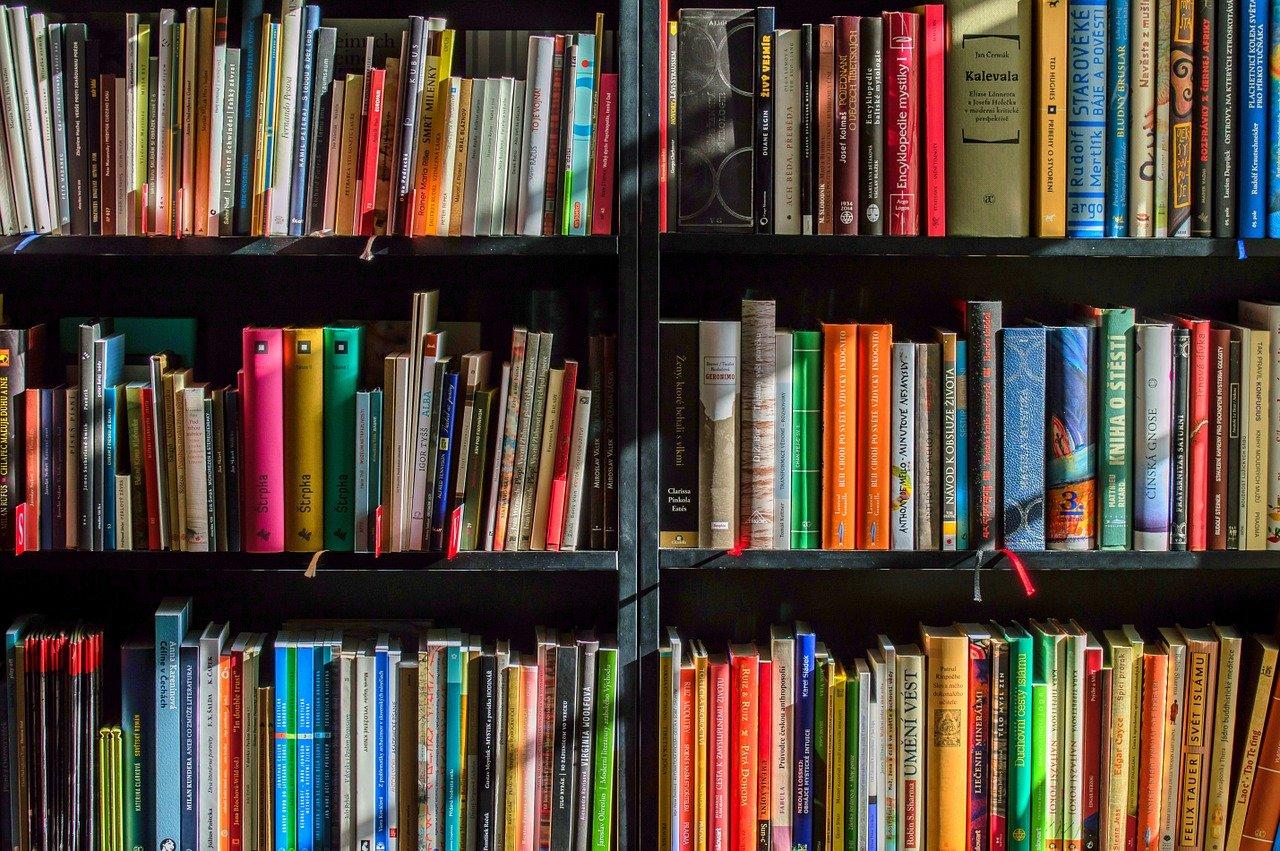 """Buchempfehlungen für kostenlose Bücher zum Thema """"Business"""" und """"Investment"""" - Das Free + Shipping Modell, gute Bücher gratis bestellen!"""