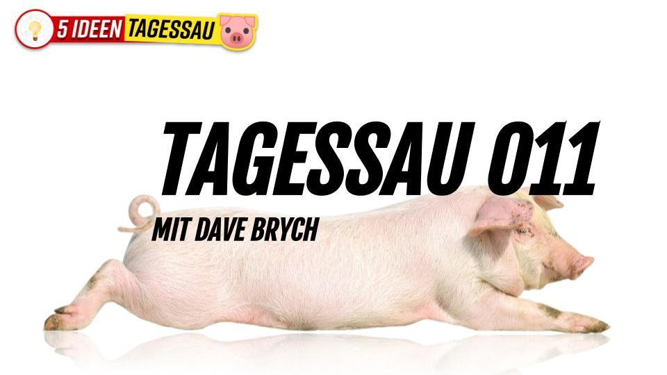 TAGESSAU 011 🐷 Die Helden vom Reichstagssturm #Satire