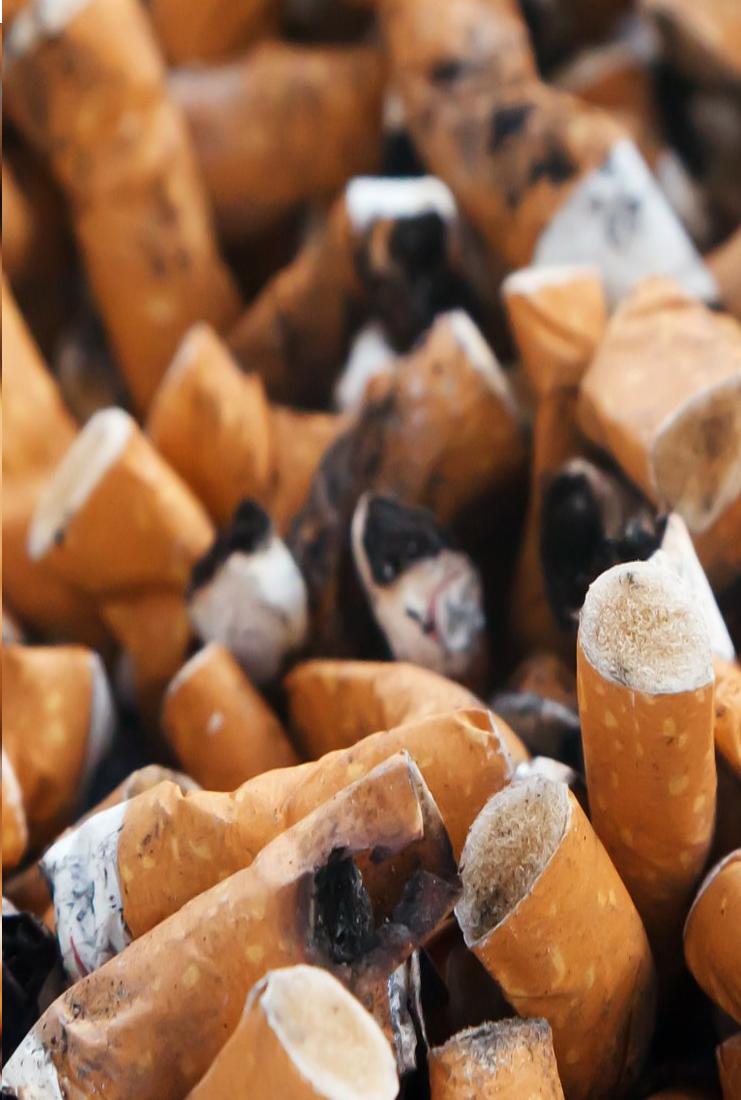 Zigaretten Nikoin Sucht