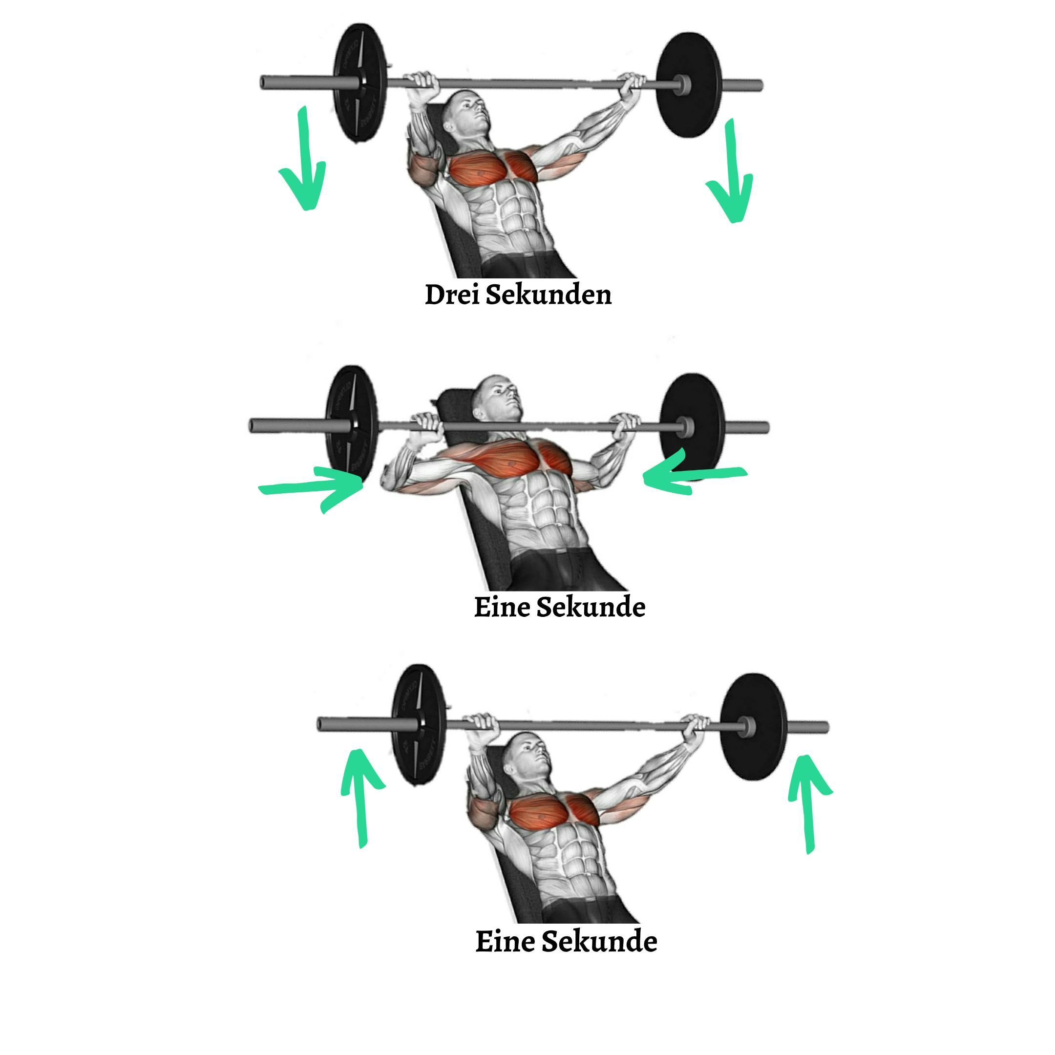 intensitaetstechnik, uebung, anleitung, muskelaufbau