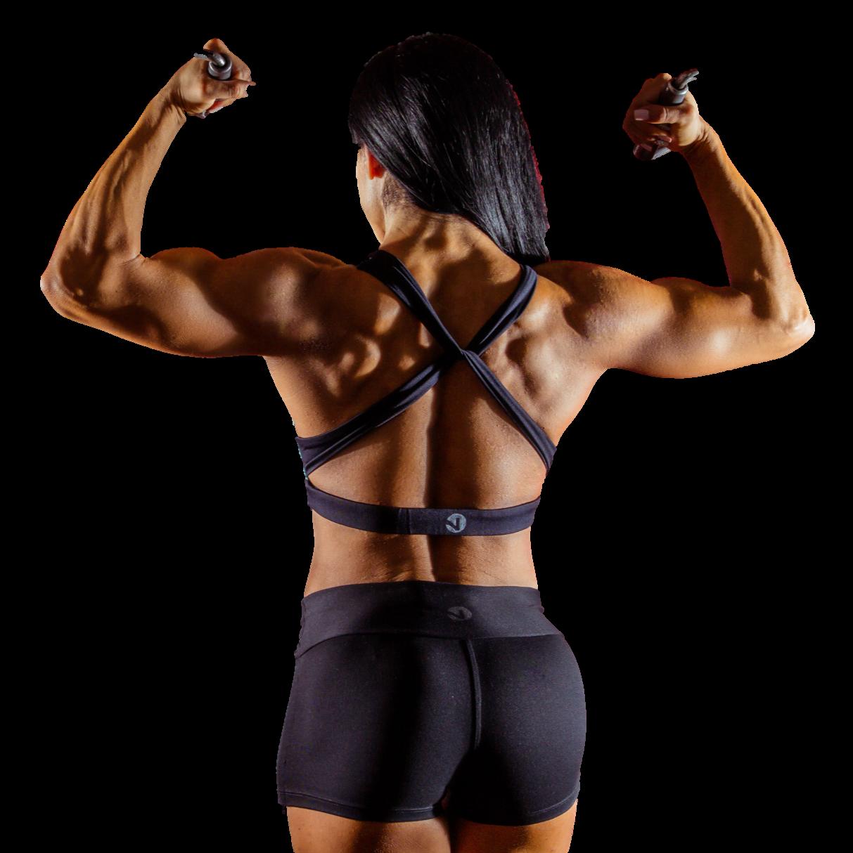 muskelaufbautraining, fitnesstraining, muskeln