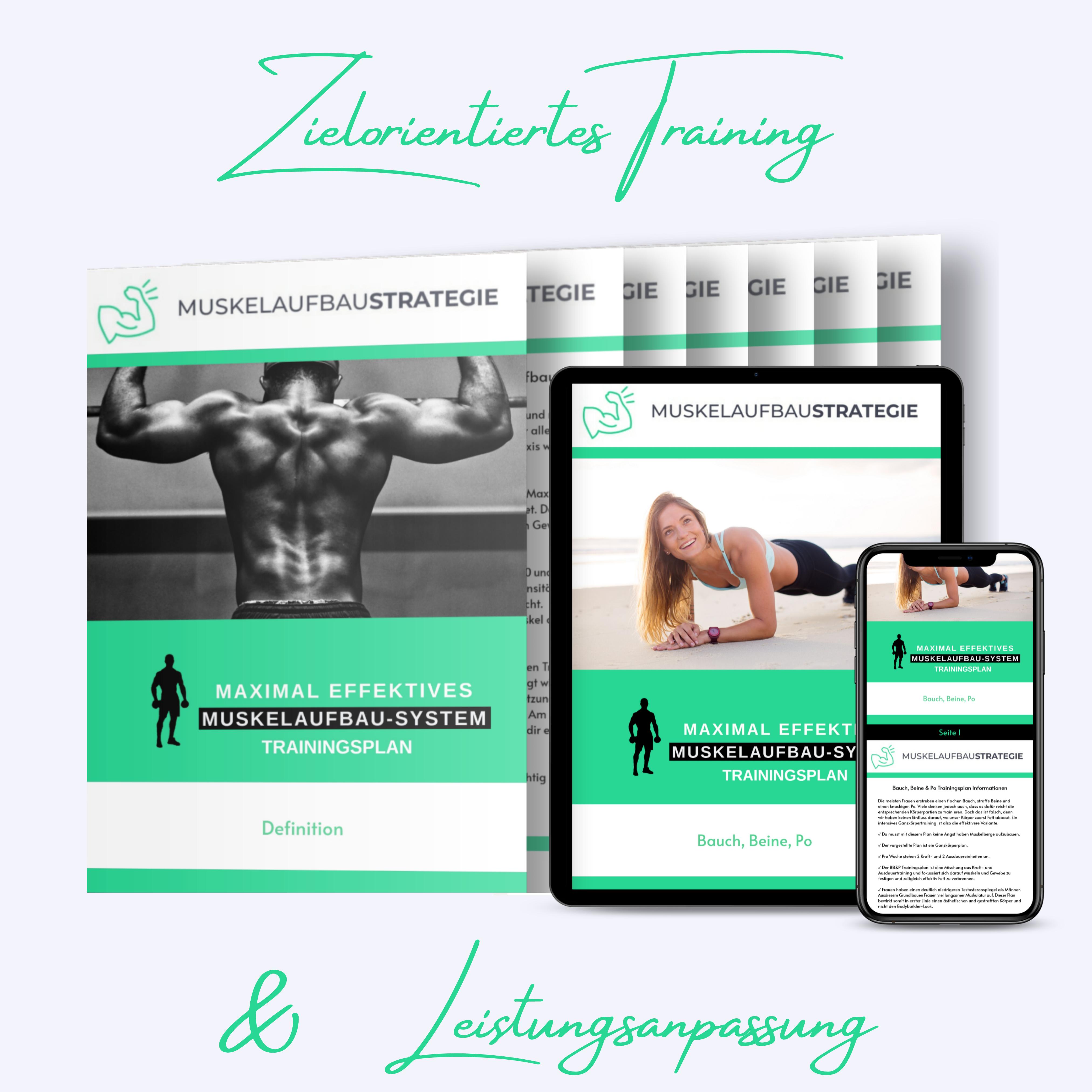 Fitness, Trainingsplan, Bauch Beine Po, Download