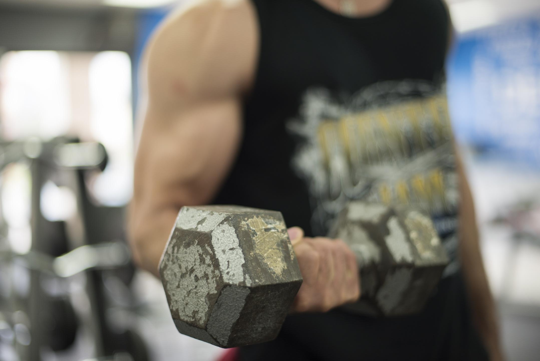 Muskelaufbau, Bodybuilding, Hantel, Bizeps ,Curl