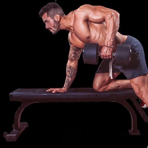 muskelaufbautraining, hantel training, Fitness