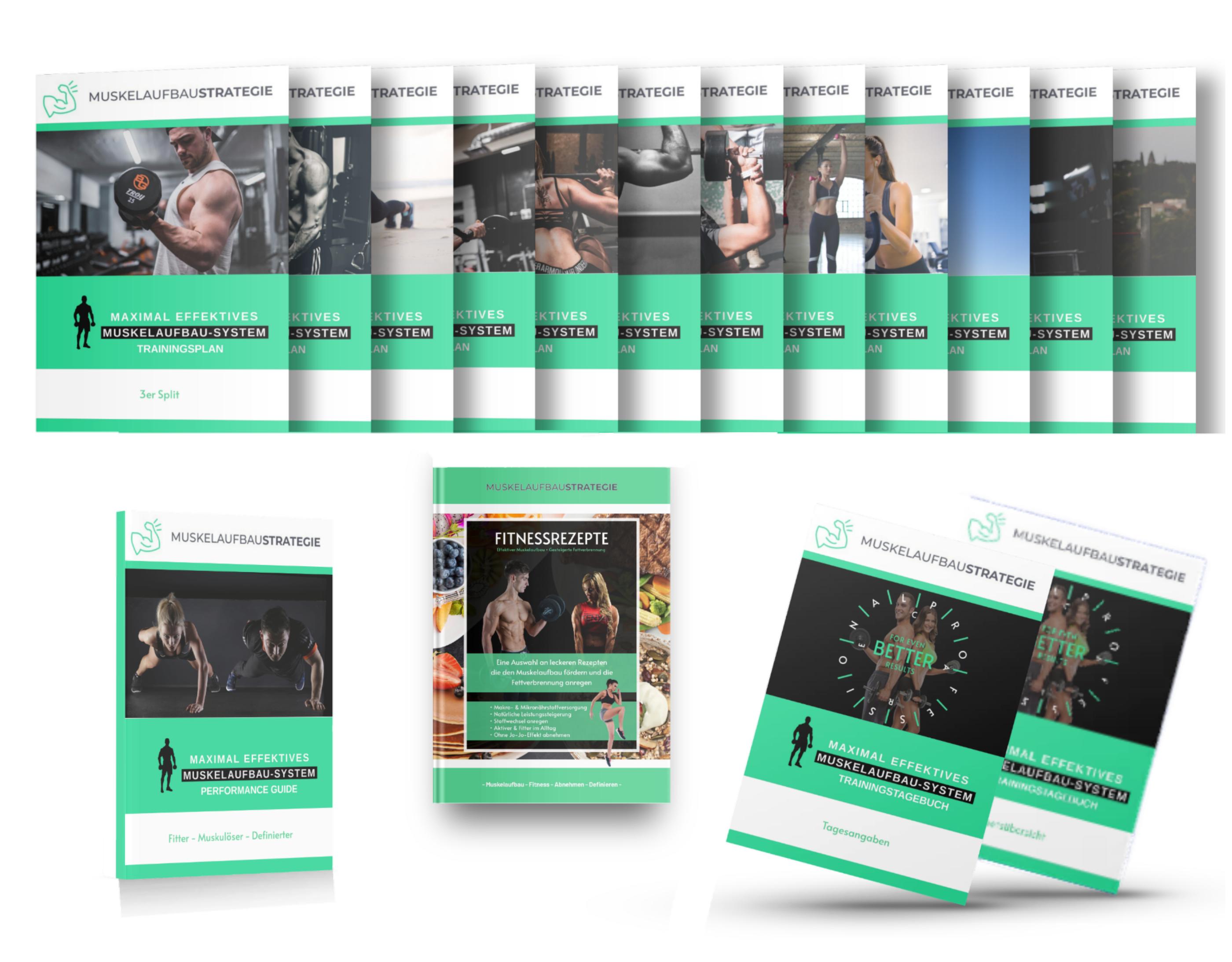 Produktbild, Muskelaufbau, Trainingsprogramm
