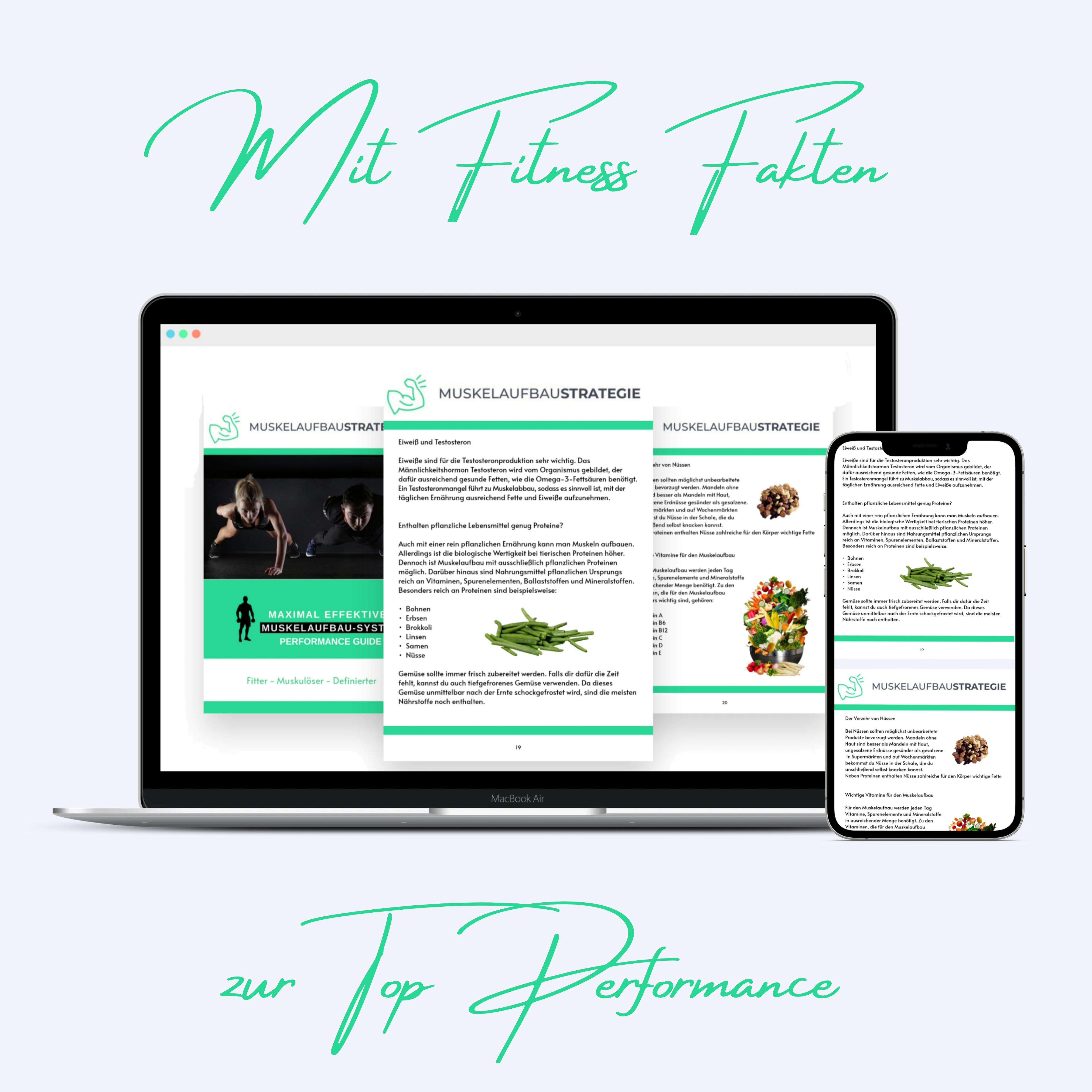 Fitnessbuch, Muskelaufbau, Ernährung, Fitnesstraining, download