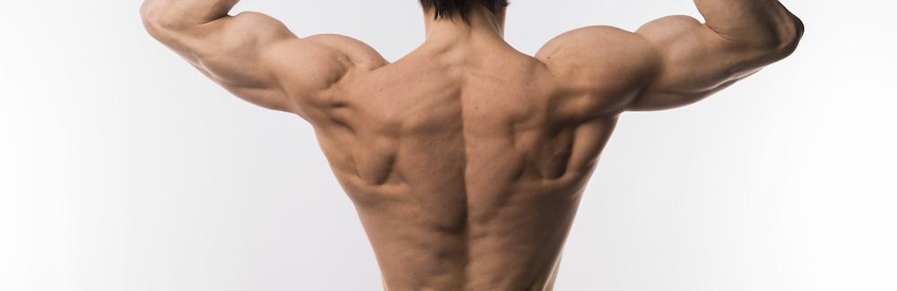 durchtrainierter männlicher rücken mit starken Muskeln