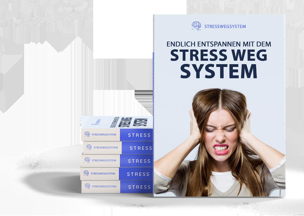 Werde deinen Stress dauerhaft los und fühl dich wieder frei!
