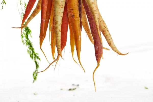 Stimmt das Gerücht über gekochte Karotten?